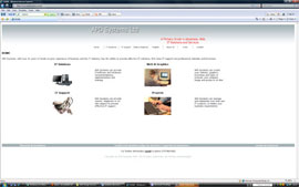 APD Systems IT website design